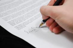 Professional Document writing